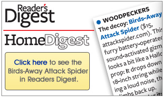 Readers Digest talks about Birds-Away Attack Spider